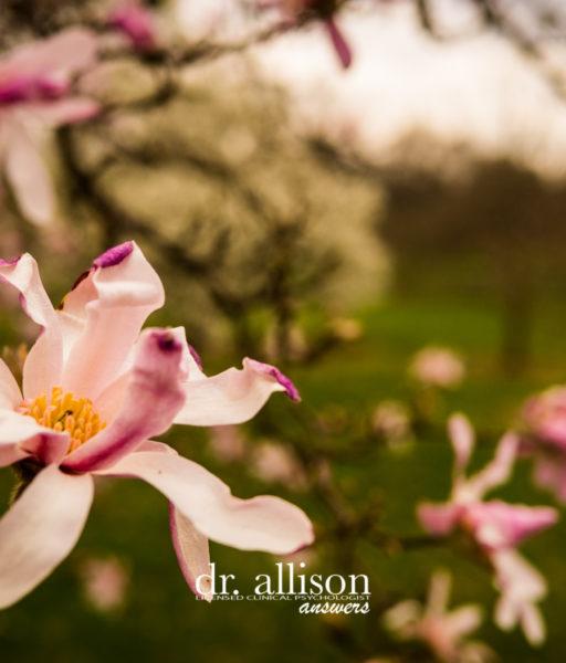 How Identifying Emotion Enhances Gratitude – Gratitude Challenge Week 3